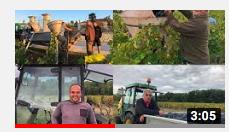 Découvrez une année au sein d'une propriété viticole comme si vous étiez